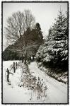 Snowy Ardennes