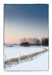 Winterlucht, Geel